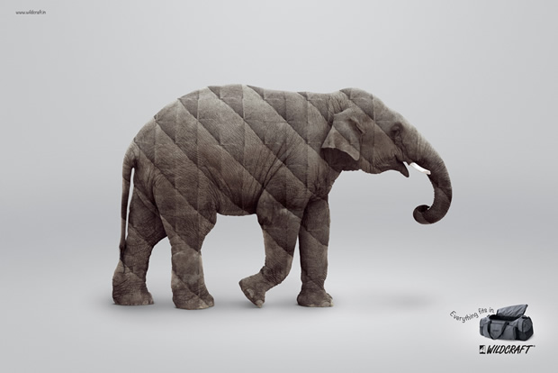 Wildcraft-Elephant